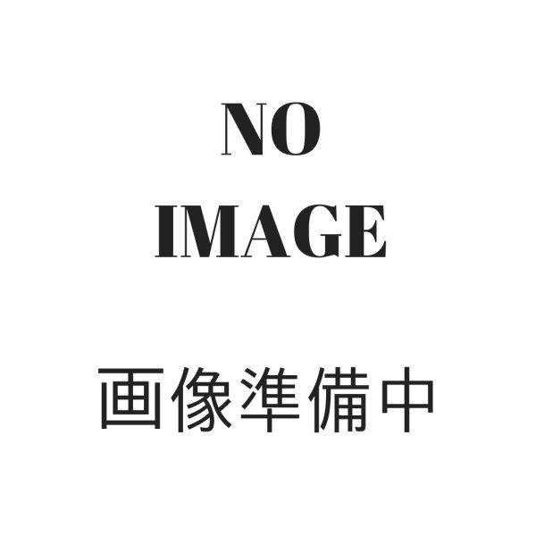 画像1: アロエベラ マセレーションオイル100ml (Z) (1)